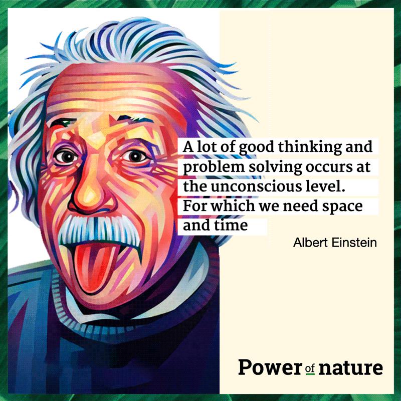 Einstein-artikel